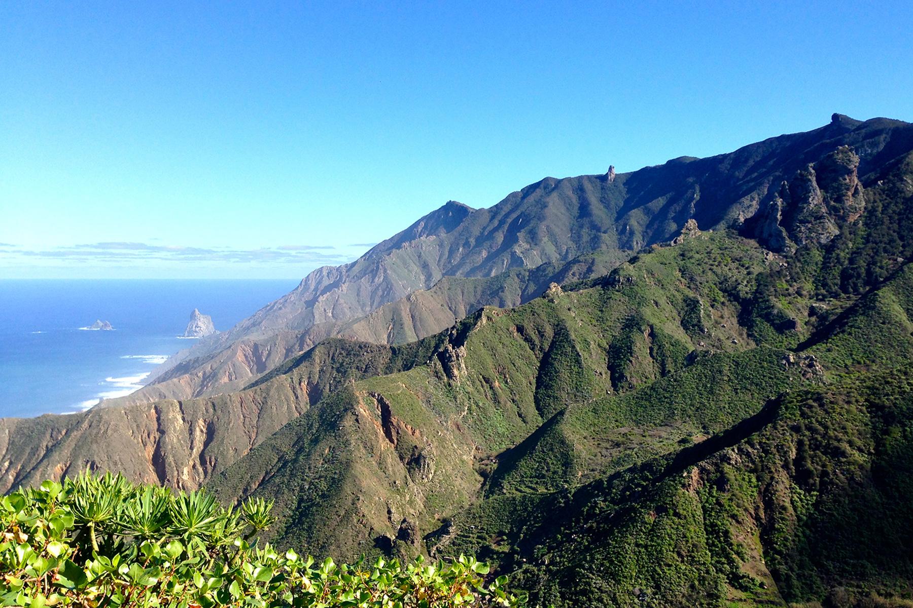 Der Norden von Teneriffa: 9 Dinge, die man auf der größten Kanaren-Insel erleben muss