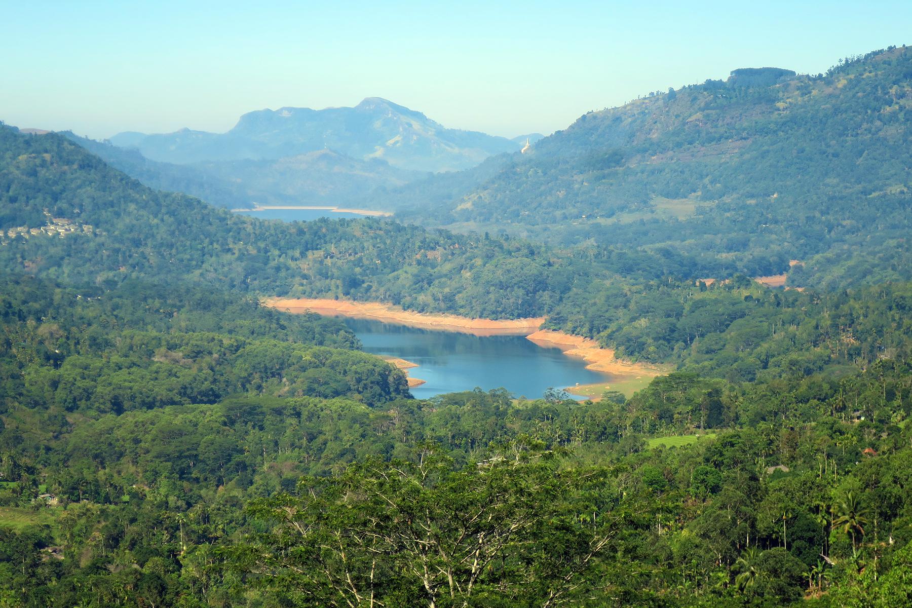 Abwarten und Tee trinken: Reise zu den Tee-Plantagen auf Sri Lanka