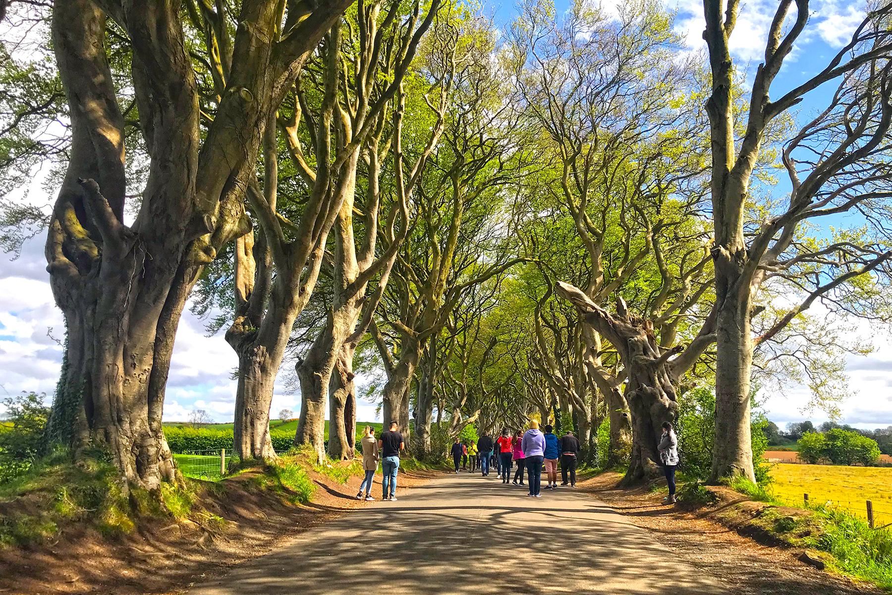Game of Thrones-Drehorte: 20 Filmlocations in Nordirland, zu denen GOT-Fans reisen müssen