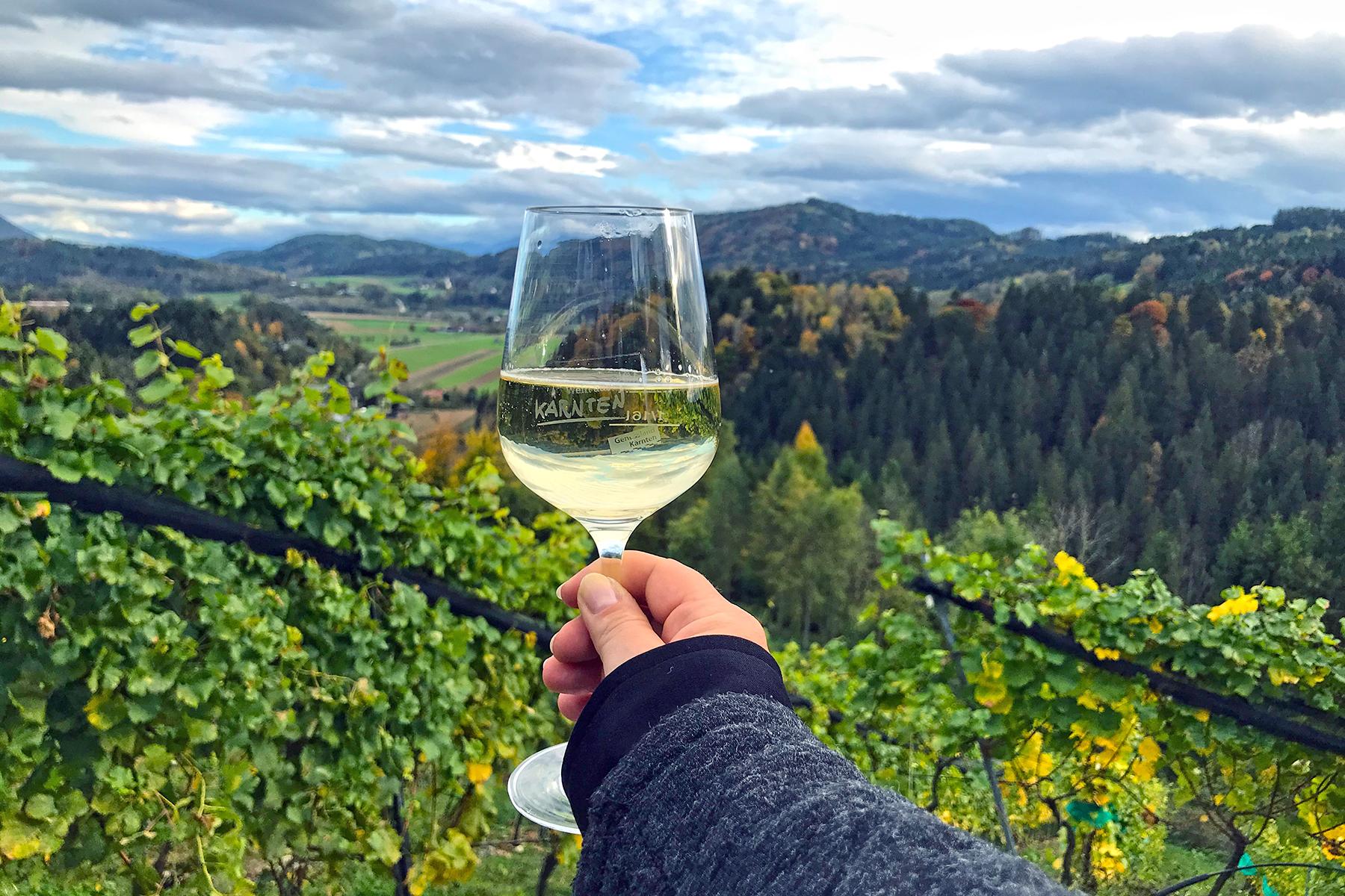 Wohnen beim Winzer: 3 Weinhotels in Kärnten