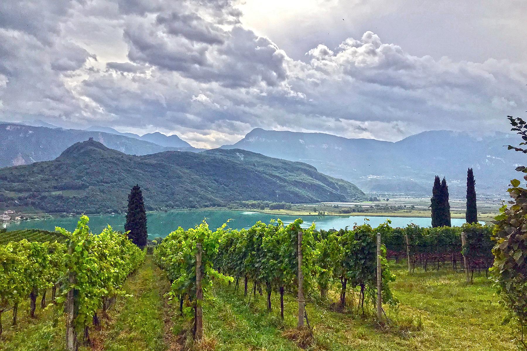 Wein-Reisen: Tipps für Weinbauregionen, Weinstraßen & Winzer-Hotels